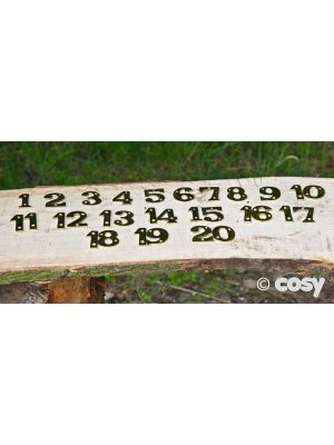 SMALLER BRASS NUMBERS 1-20