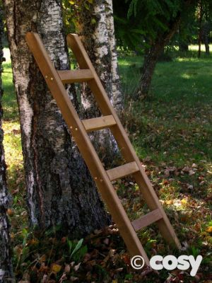 WOODEN PLAY LADDER