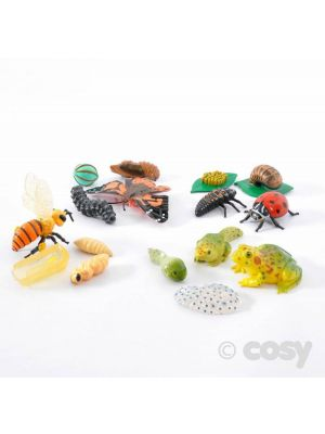 LIFE CYCLE FIGURES COLLECTIONS