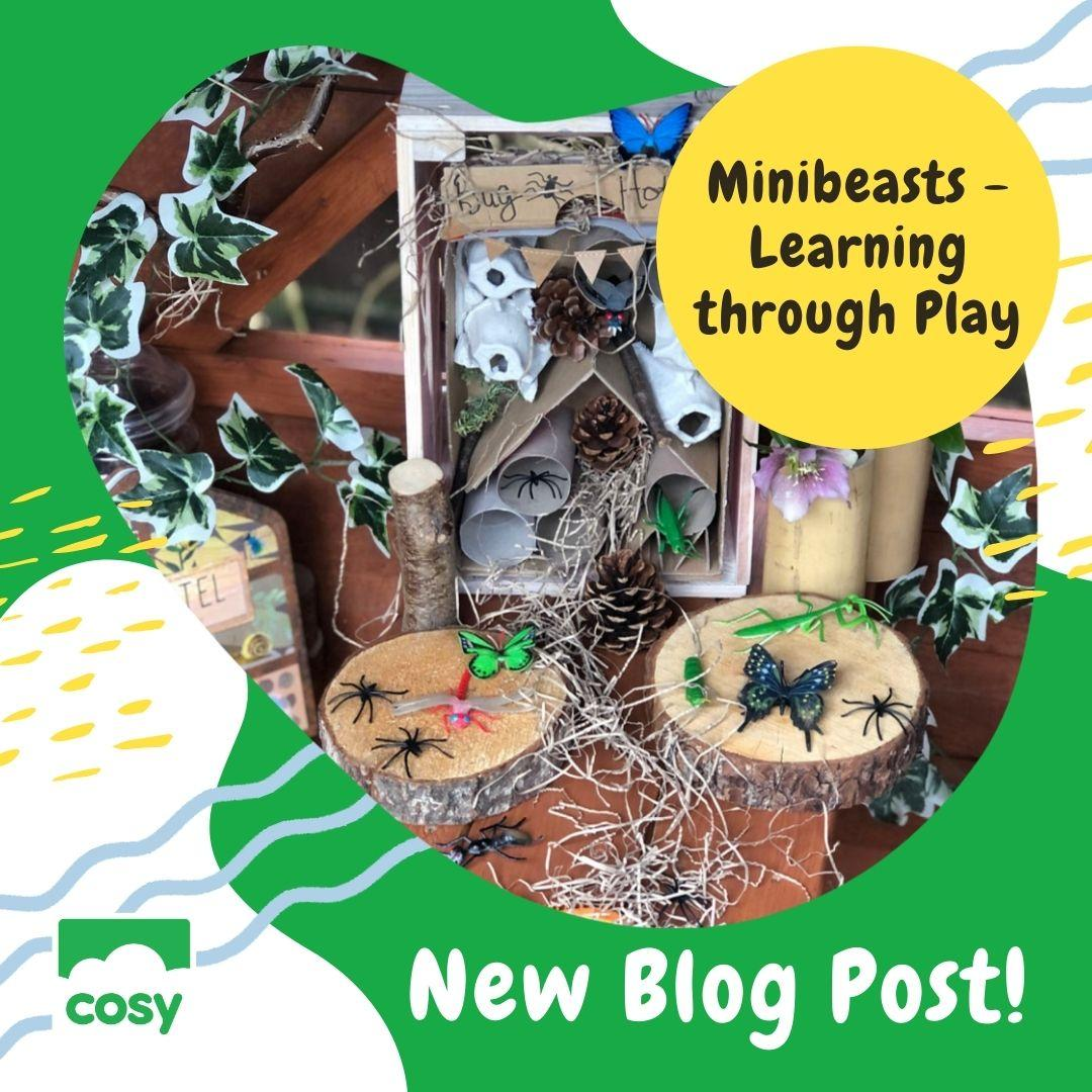 Minibeasts - Learning through Play