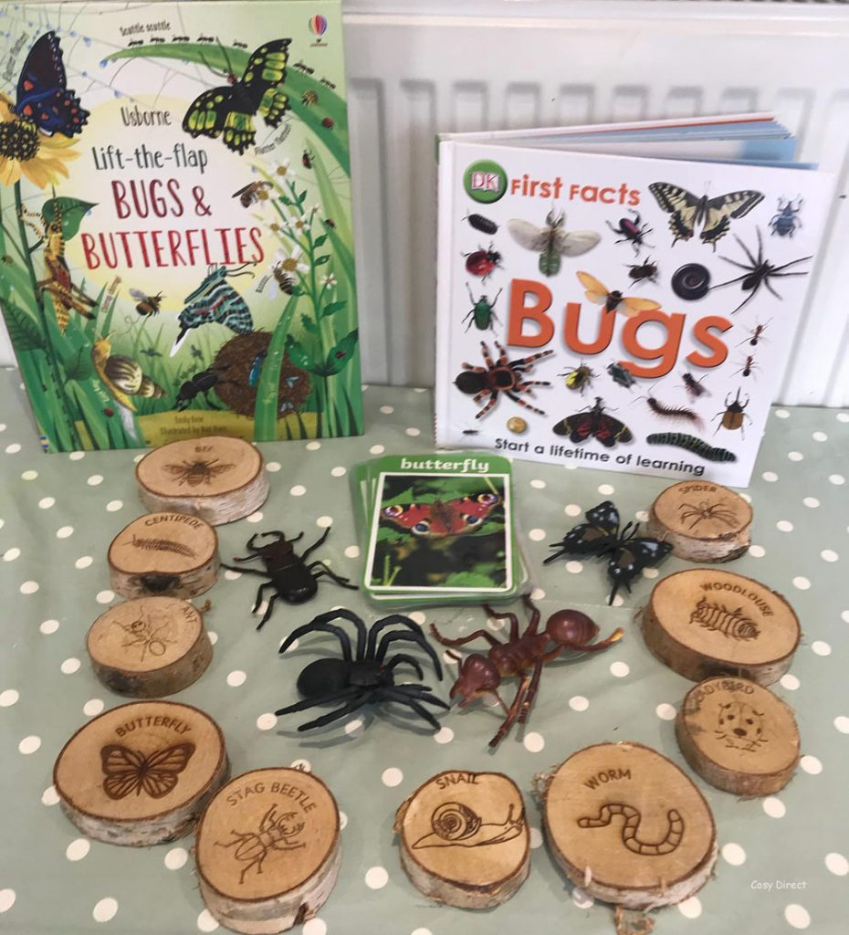 book play - insects