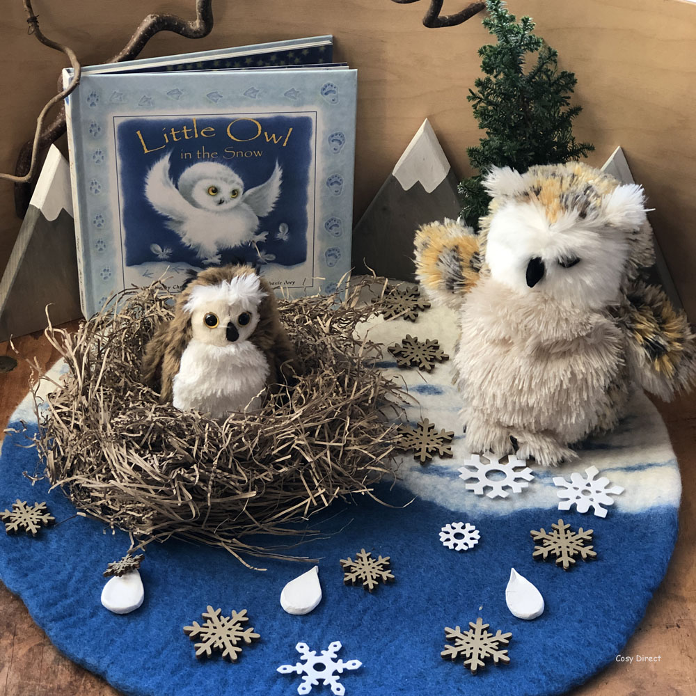 book play - owls