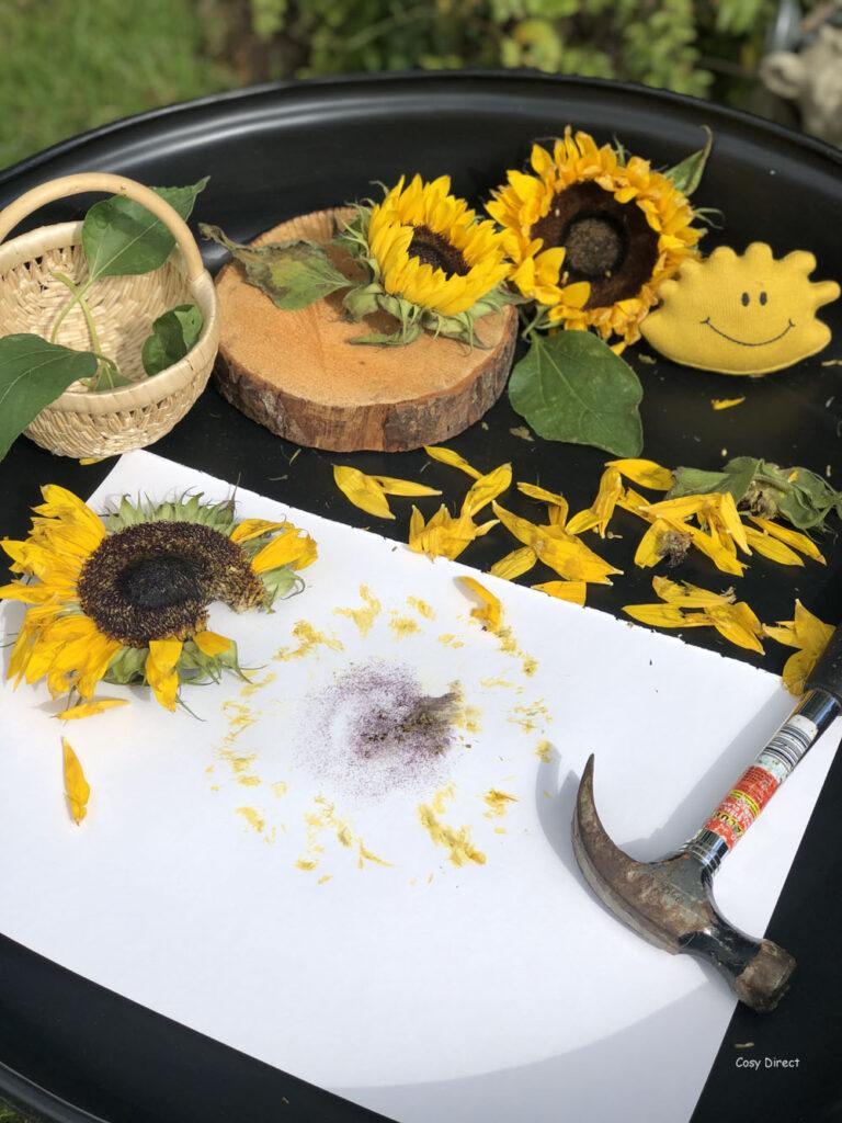 Tray Play - Sunflowers