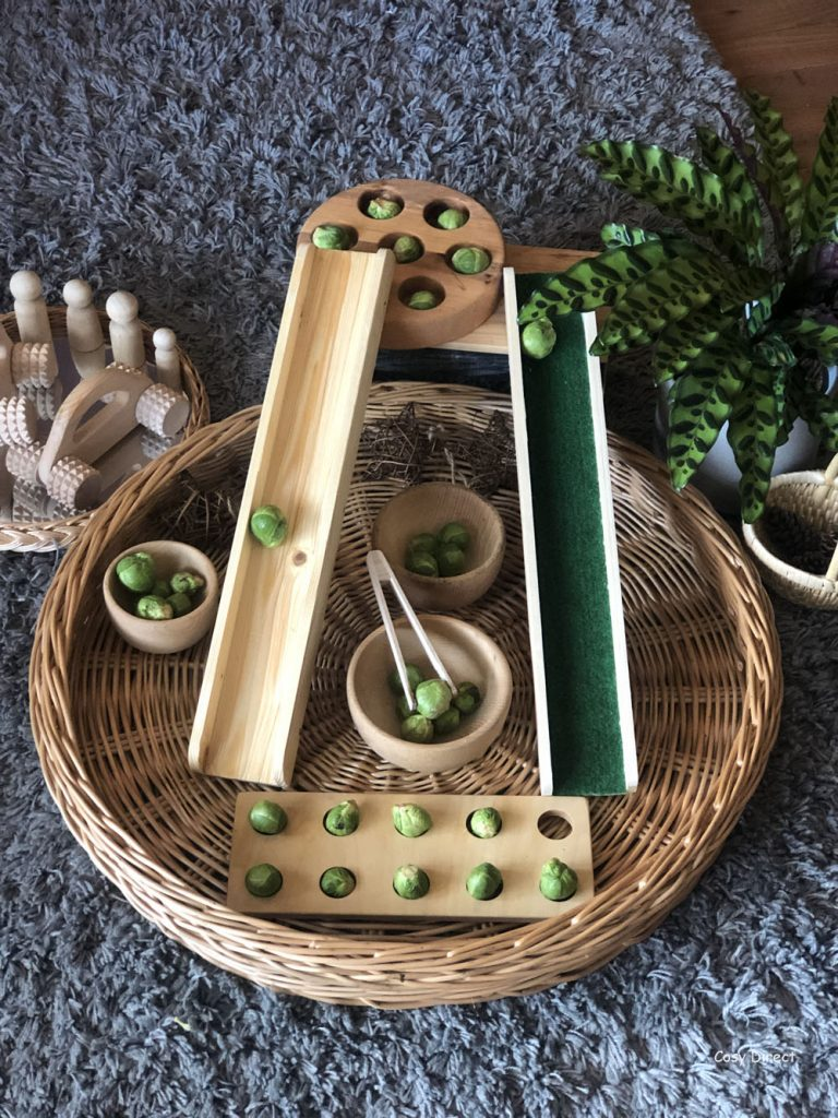 Wicker Tray Play -sprout races