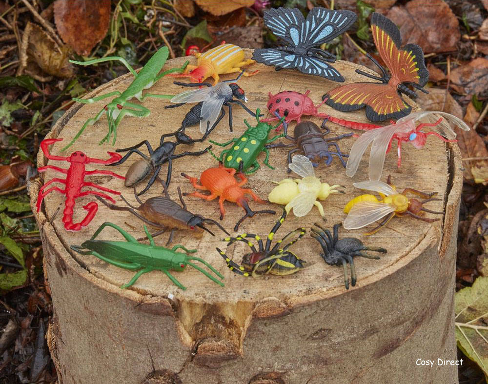 minibeasts, bugs and insects