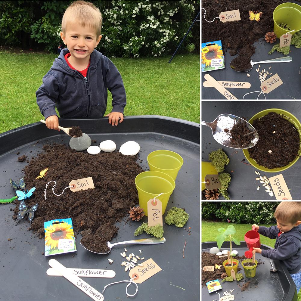 Planting Spring seeds
