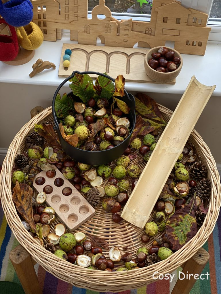 ways to play with conkers